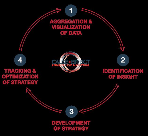 CESM Process Model
